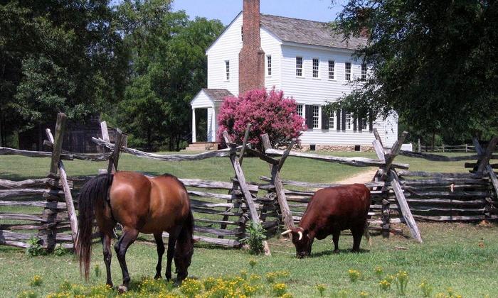 Historic Latta Plantation - Huntersville: Latta Celtic Festival for Two, Four, or Six on March 14-15 at Historic Latta Plantation (44% Off)
