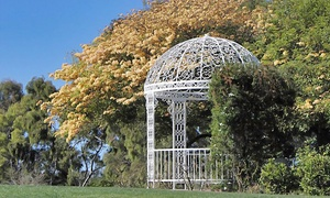 South Coast Botanic Garden : New Individual or New Family Membership for One Year to South Coast Botanic Garden (Up to 42% Off)