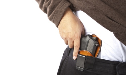 Concealed-Carry Training and Certification Class for One or Two at NW Ohio Pistol Training (Up to 61% Off)