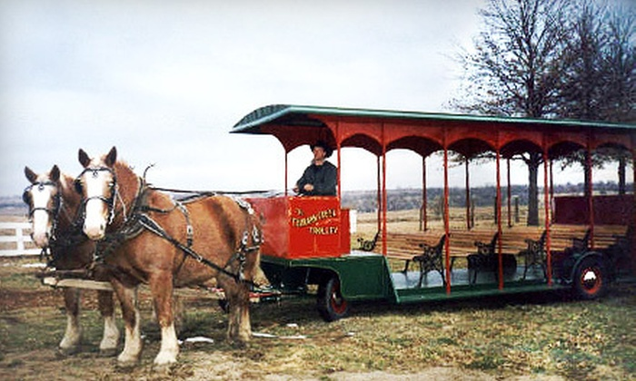 Temecula Carriage Company - The Temecula Carriage Company: Winery Tour in a Horse-Drawn Trolley from Temecula Carriage Company (Up to 61% Off). Three Options Available.