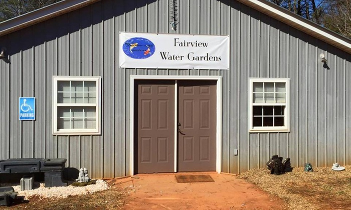 Fairview Water Gardens - Six Mile: $29 for $50 Worth of Lawn and Garden Care — Fairview Water Gardens -Koi, goldfish, garden decor, pond supplies