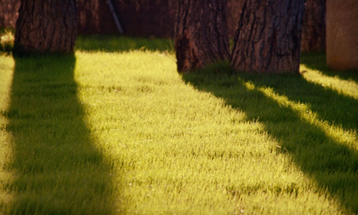 Always Affordable Lawn Care - Tallahassee: Lawn Care, Landscaping Package, or One or Two Hours of Tree Services from Always Affordable Lawn Care (Up to 75% Off)