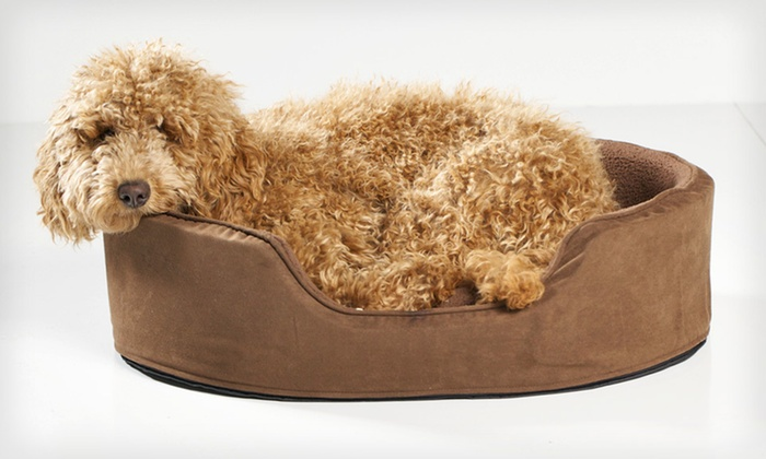 Furhaven Oval Pet Loungers: Furhaven Chenille or Suede Pet Loungers (Up to 44% Off). Multiple Colors and Sizes Available. Free Shipping and Returns.