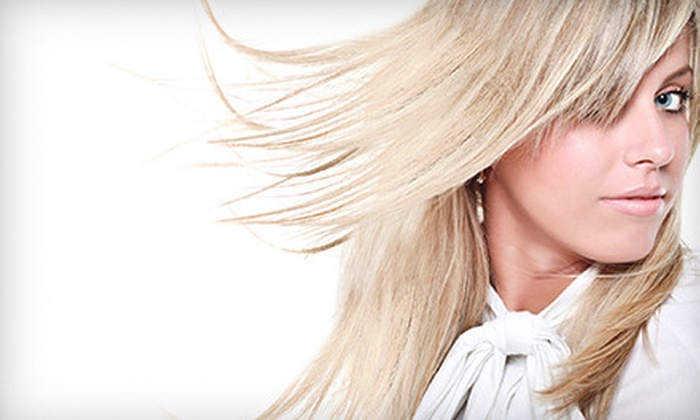 Salon Sa'Treice - O'Fallon: $14 for $25 Worth of Color Services at Salon Sa'Treice