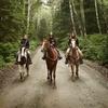 75% Off Horseback-Riding Lessons