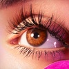 56% Off Eyelash Extension and Touch-Up