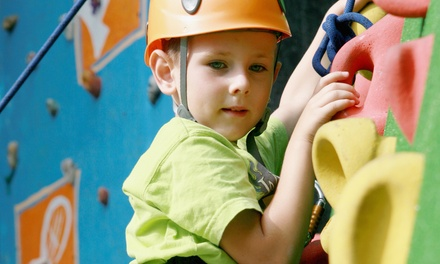 Fun-Center Outing with Jungle-Gym Play and Rock Climbing for Two, Four, Six, or Ten Kids  (Up to 56% Off)