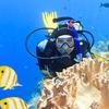 45% Off a Scuba-Diving Certification