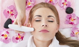 Cascade Day Spa: $52 for a Skin Consult, Microdermabrasion, and Express Facial at Cascade Day Spa ($180 Value)