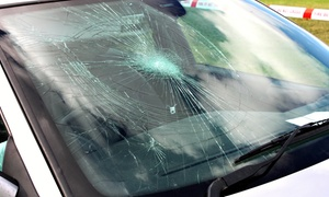 All Auto Glass. Corp: $19 for $100 Toward Windshield Replacement or Window Repair at All Auto Glass. Corp