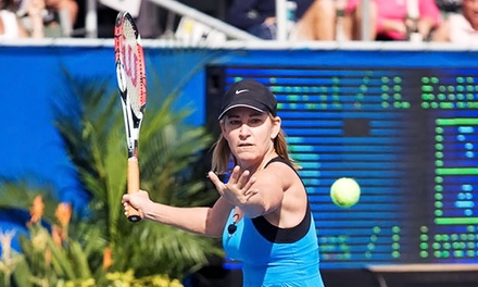 General Admission or Club Level Ticket to Chris Evert/Raymond James Pro-Celebrity Tennis Classic (Up to $ Off)