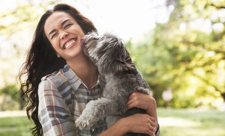 $29 for a Dog Behavior and Psychology Course from PetAddict ($485 Value)