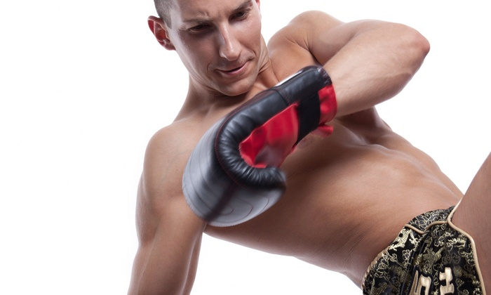 Paladin MMA Academy - Palmetto I-75 Indusrtial Center: 10 or 20 Cross-Training, Tae Bo, Kickboxing, or MMA Classes at Paladin MMA Academy in Hialeah (Up to 82% Off)