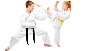Lee's Champion Taekwondo Academy: Kid's, Tiny Tigers, or Family Tae Kwon Do Classes at Lee's Champion Taekwondo Academy (Up to 89% Off)