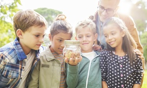 The Bug Lady's Science Academy: $9 for Kid's Saturday Science Classes at The Bug Lady's Science Academy($15 Value)