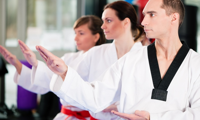 The Spartan Gym - Drew Park: $78 for $150 Worth of Martial Arts — The Spartan Gym
