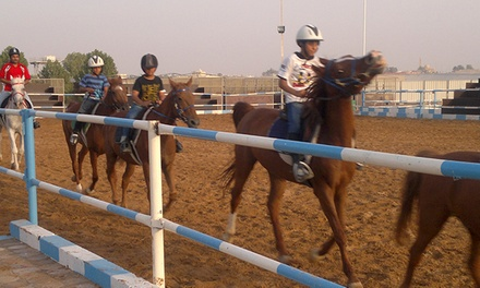 Horse Riding Classes: Two, Five or Ten from AED 199 at Baniyas Equestrian Centre (Up to 59% Off)