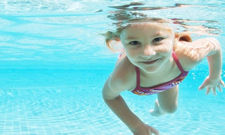 $35 for Four Adults or Parents/Tots Group Swim Lessons at Catch the Wave Swim Club ($106.50 Value)