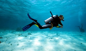 Aquatic Adventures of Michigan: One Scuba Class or Beginners' or Advanced Open-Water Course at Aquatic Adventures of Michigan (Up to 83% Off)