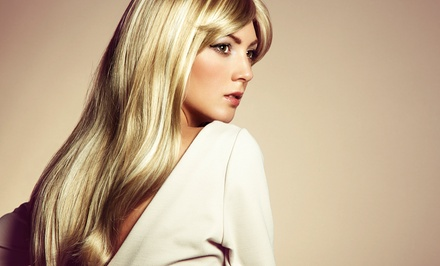 Haircut, Haircut and Color, or Haircut and Partial Weave Package at Evans & Co. Salon (Up to 61% Off)