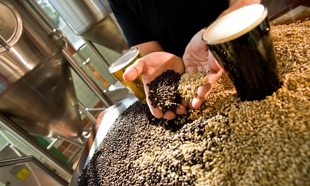 Two-Hour Luxury Brewery Tour or Texas Barbecue Tour for Up to Seven from Lux.Limo (50% Off)
