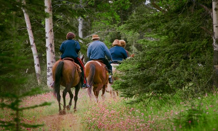 60-Minute Horseback Trail Ride for One or Two at Rockn' C Trail Rides (Up to 39% Off)