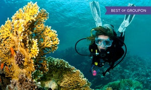 Beach Cities Scuba Centers: $199 for a PADI Open Water Diver Certification Course and Scooter Dive at Beach Cities Scuba ($675 Value)