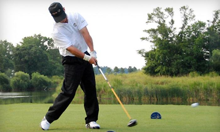 Woody's Golf Range - Reston: $65 for One-Hour nFlight Performance Golf Lesson at Woody's Golf Range in Herndon ($130 Value)