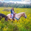 Half Off Horseback Trail Ride and Lesson for Two