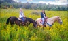 Equestrian Ridge Farm - Hocking Hills Region: $72 for a Horseback Trail Ride for Two with Introductory Lesson and Lunch at Equestrian Ridge Farm ($145 Value)