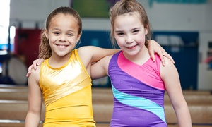 The Little Gym: Fitness Classes for Kids at The Little Gym of Farmington (Up to 54% Off). Two Options Available.
