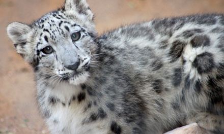 $49 for an Introductory Membership to the Micke Grove Zoological Society ($100 Value)