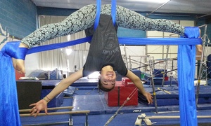Hunt's Gymnastics Academy: One Month of Aerial Silks Classes at Hunt's Gymnastics Academy (55% Off)