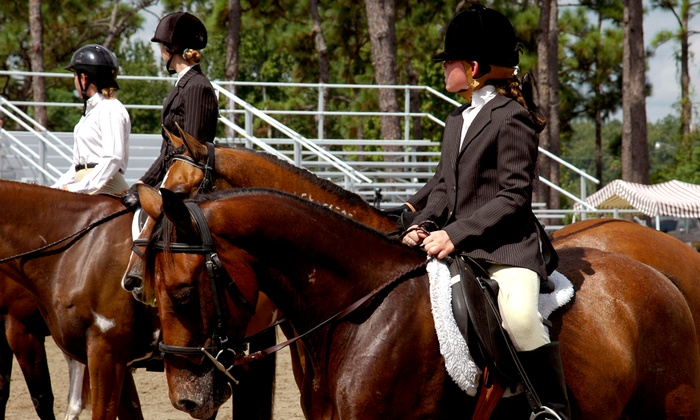 Lou-don Equestrian Center - Comstock: $22 for $40 Worth of Horseback Riding — Lou-Don Farms