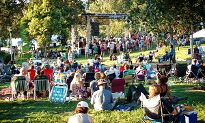 Blues and Bones Festival: Admission to Blues and Bones Festival for Two or Four on July 11 in Eagle (Up to 50% Off)
