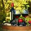 "$10 Off $75 ""Malibu Excursion"" Wine Tasting Tour"