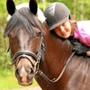 Up to 56% Off Horse Riding Lessons at Zequestrian