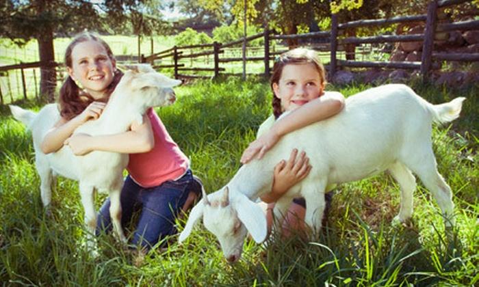 Tashunka Farms - Tashunka: Public or Private Admission to Petting Zoo for Up to Four at Tashunka Farms (Half Off)