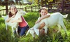 Redmond Petting Farm - Tashunka: Public or Private Admission to Petting Zoo for Up to Four at Tashunka Farms (Half Off)
