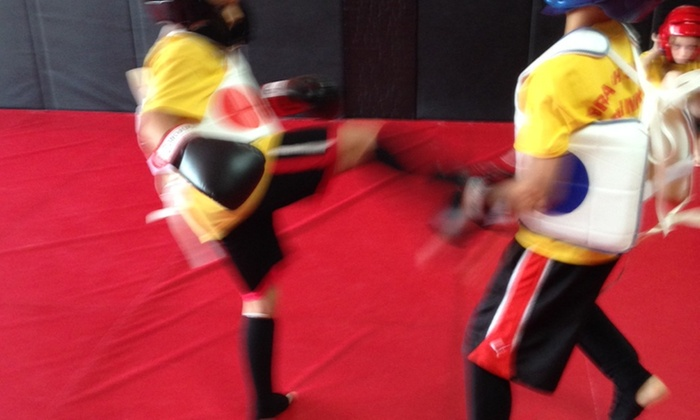 Brachs MMA LLC. - Voorhees: Two Weeks of Unlimited Martial Arts Classes at Brachs Mma Llc. (50% Off)