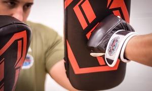 International Krav Maga Michigan: Five Martial Arts Classes at International Krav Maga Michigan (80% Off)