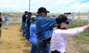 Training & Advisory Services LLC: Concealed Permit Basic Handgun Course for One or Two at Training & Advisory Services LLC (Up to 53% Off)