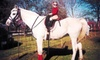 Up to 55% Off Horse-Riding Lessons