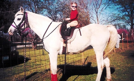 One 60-Minute Horseback Riding Lesson (a $36 value) - Labzara Ranch in Broken Arrow