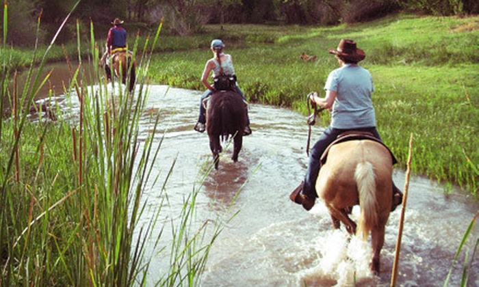 Cowboy Way Adventures - Multiple Locations: Two- or Three-Hour Guided Horseback Trail Ride for One or Two from Cowboy Way Adventures (Up to 54% Off)