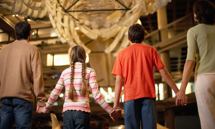 T Rex Museum - Marana: One-on-One Class with a Paleontologist, or Admission and Five Activities for Four at T Rex Museum (50% Off)