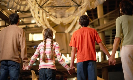 National Dinosaur Museum Entry for One Child $5, Adult $10 or Family of Four $25, Nicholls Up to $45 Value