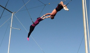 Aerial Trapeze Academy LLC: Beginner Trapeze Lesson for Two or Four at Aerial Trapeze Academy (Up to 50% Off)