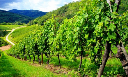 Winery and Cidery Visit for 2 or 4 w/ Shop Credit and Soft Pretzels at Cobbler Mountain Cellars (Up to 51% Off)