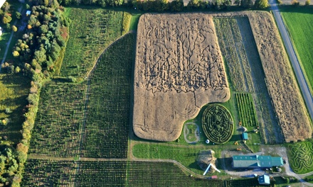 Corn Maze for Two or Four and a Credit Toward Pumpkins at Springside Farm (42% Off)